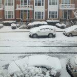 三月份的春雪